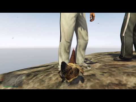 Grand Theft Auto V (PS4) Ein Huhn ?! Peyote Blume / Mt. Chiliard