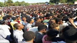 Ethiopia welega ወለጋ ነቀምት የጦር አውድማ ሆናለች