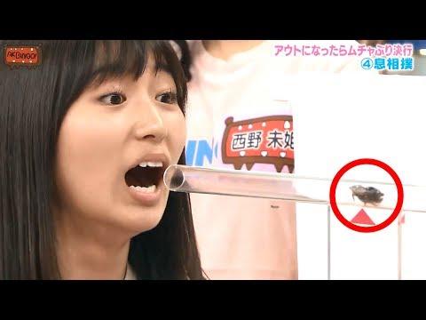 8 Japanische Fernsehshows,