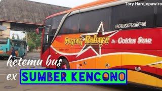 Penumpang Cuma 5 ! Trip Report Bus SUGENG RAHAYU Patas Purwokerto - Banjarnegara