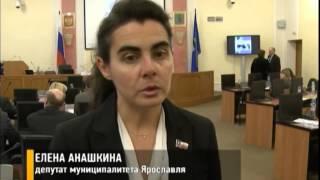 В Ярославле насчитали более 5 тысяч бездомных животных