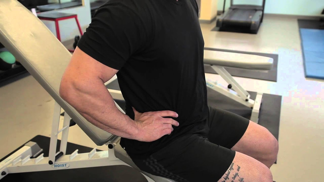 Chair Exercises On Tv Gym Plus De 50 Substitute For Roman Exercise Professional Workout