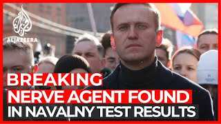 Nerve agent Novichok found in Russia's Alexey Navalny: Germany