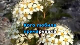 В САДУ ГУЛЯЛА КАРАОКЕ гурт ЕКСПРЕС