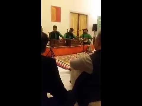 pakistan embassy denmark