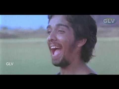 Aalolam Paadi Song | Avarampoo Movie Songs | Vineeth | Ilayaraja Full HD Video