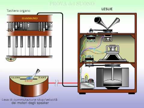 Suggerimenti dischi audiophile e simili - Pagina 2 Hqdefault