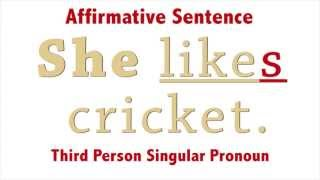 Affirmative Negative Sentences