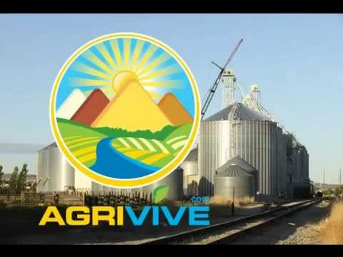Bulk Grains Trade, Grains Trade, Grains Trade, Grains Trade, Grains Trade, Grains Trade, Grains