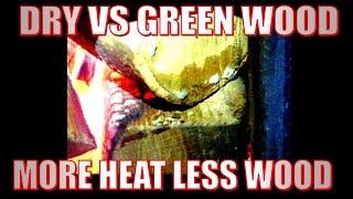 Dry vs green firewood