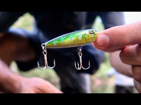 FRESH WATER FISHING FOR AUSTRALIAN BASS!