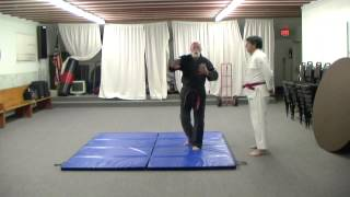 Sleeper variation, Single Wing Choke TAI Martial Arts, Terrence M. ...