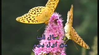 Arabic Karaoke: Abed El Halim Hafez Ana Lek 3ala Toul
