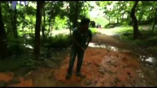 Travel Guide - Visit to Thommankuthu Waterfalls