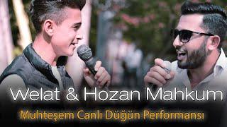 Welat  Hozan Mahkum - Düğün 2020 ( Canlı Düğün Performansı )