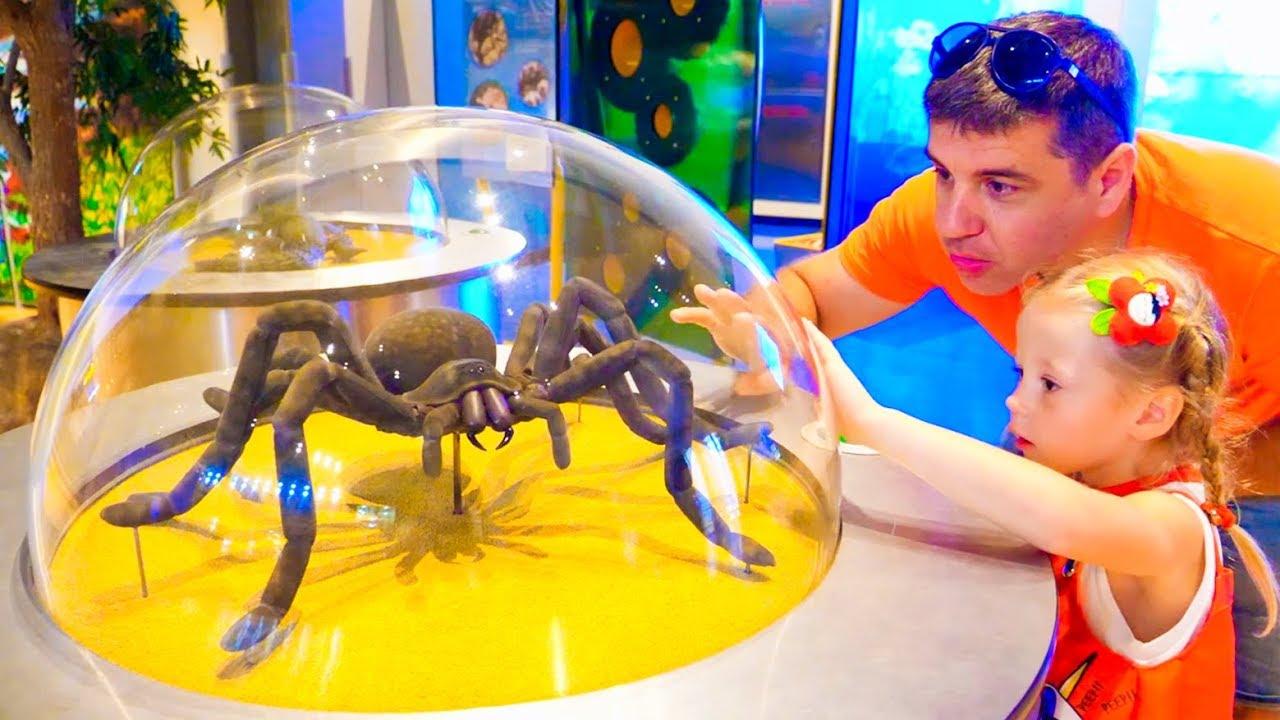 Download Stacy e papai se divertem no museu das crianças
