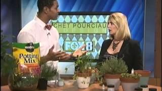 Chet Pourciau On Fox 8 - Indoor Herb Garden