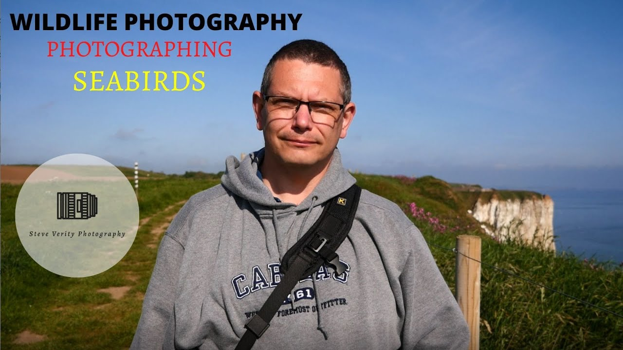 Photographing seabirds