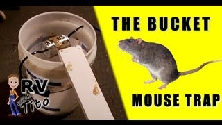 The Best Mouse Trap - The Bucket Trap