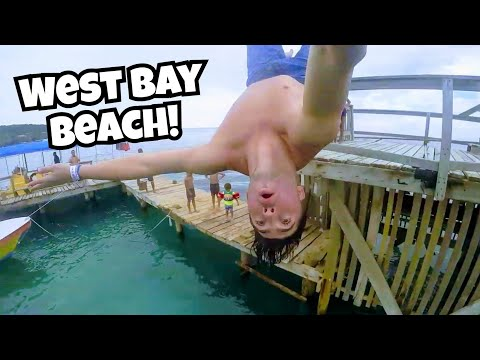 Cruise Stop in Roatan Honduras |  Beach, Monkeys & Sloth's