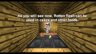 Rotten Flesh commercial. [Minecraft Machinima]