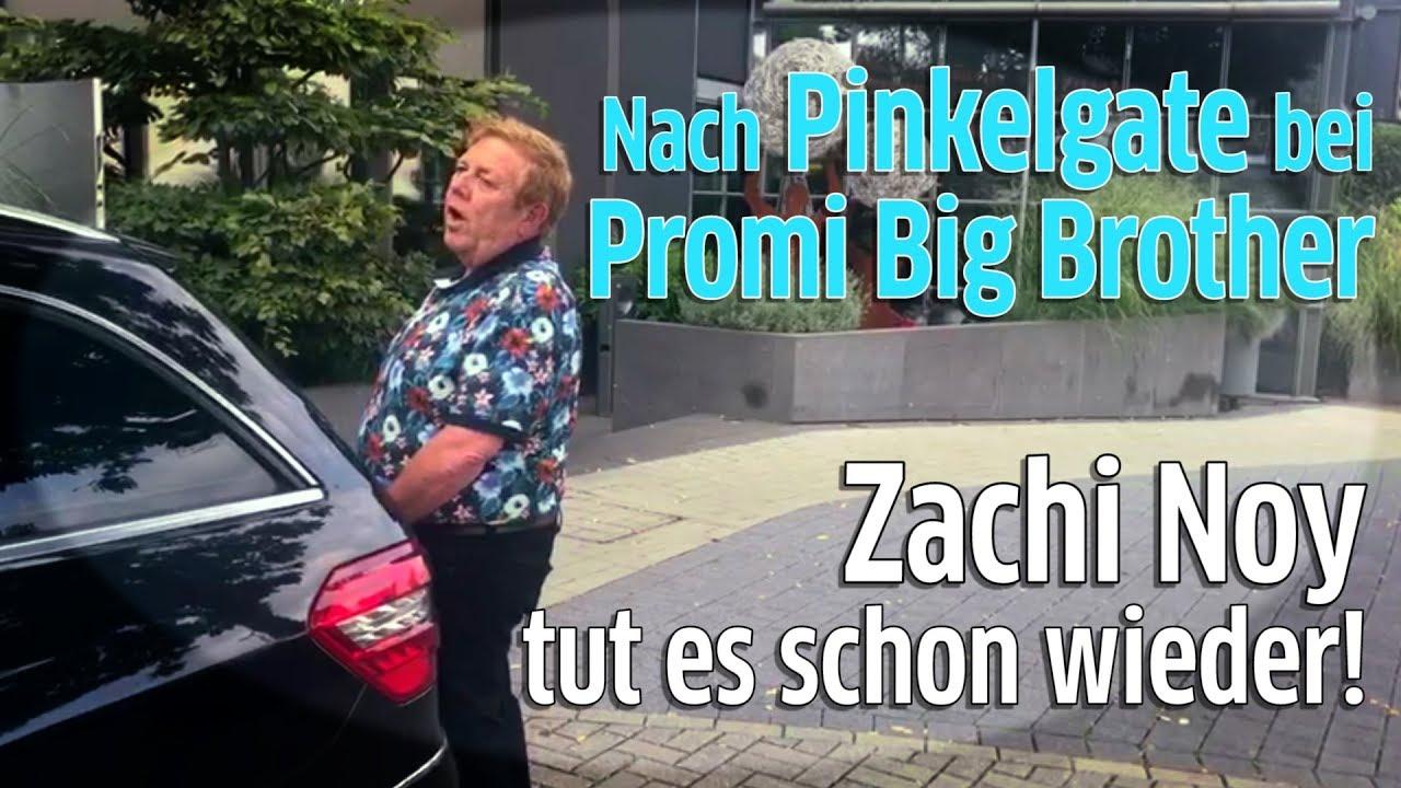 Zachi Big Brother