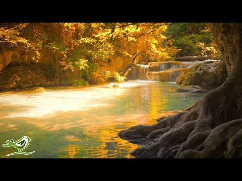 Beautiful Relaxing Music: \