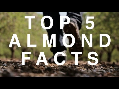 TOP 5 FACTS ABOUT ALMONDS YOU DIDN'T KNOW
