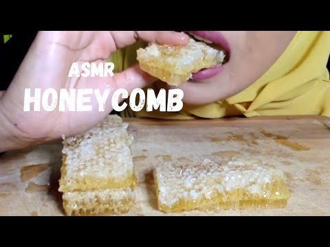 asmr-raw-honeycomb-eating-sound- -sarang-lebah-madu-asmr