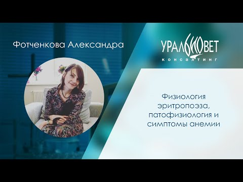 Физиология эритропоэза, патофизология анемий, симптомы анемии. Фотченкова Александра #убвк_терапия