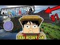 MÌNH SẼ TRỞ THÀNH VUA HẢI TẶC !! TRÁI ÁC QUỶ GIẢ | Minecraft Onepiece 2.0 #1