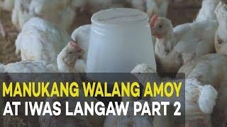 manukang walang amoy at iwas langaw housing construction agribusiness broiler farming part 2