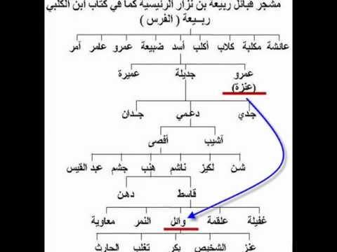 نسب وجذور قبيلة عنزة الوائلية (شرح مبسط)