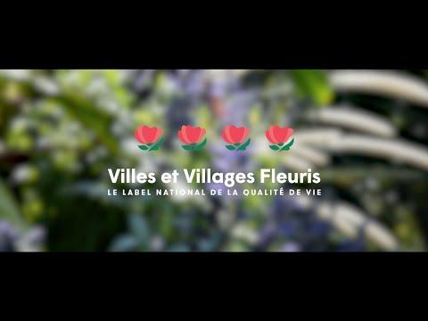Cholet 4e fleurs - Le film