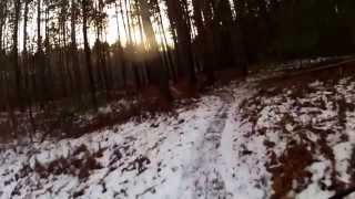 Riding the Midland City Forest In Fatbike Style!
