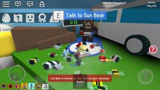 Count down for sun bear (roblox bee swarm simulator)