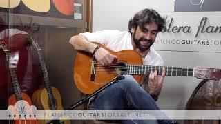 DANIEL CASARES plays bulerias in Solera Flamenca: Capote de Seda YouTube Videos