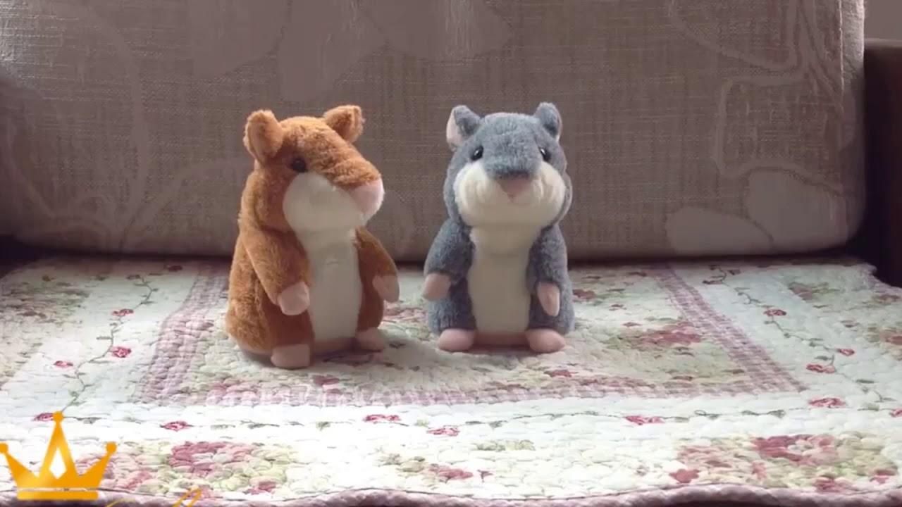 Hammie De Hamster Youtube