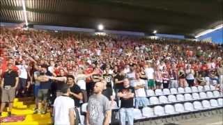 Fc Bayern München Ultras (Schickeria München & Südkurve)