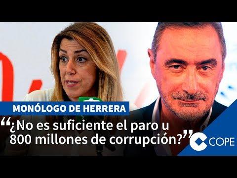"""Herrera: """"¿Qué ha hecho Susana Díaz? Insultar a Vox"""""""
