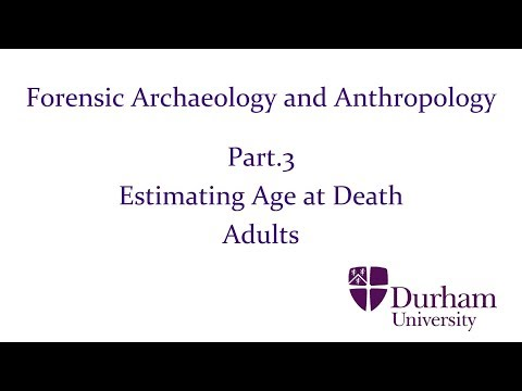 Forensic Archaeology And Anthropology Part 3 Estimating Age At Death Adults Youtube