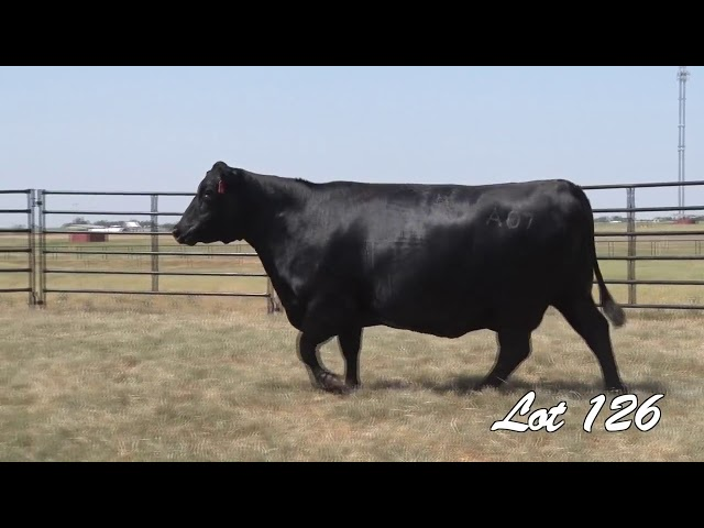 Pollard Farms Lot 126