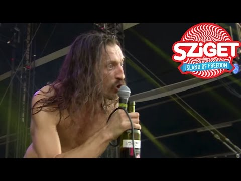 Gogol Bordello Trans-Continental Hustle & Immigraniada Live @ Sziget 2015