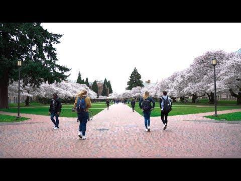 Why You Should Go to the University of Washington