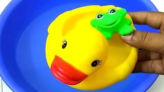 Learn Wild Animals for Kids Swimming in colors water slides Color Animals in outdoor playground