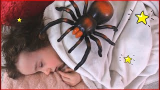 itsy bitsy spider song by Makar