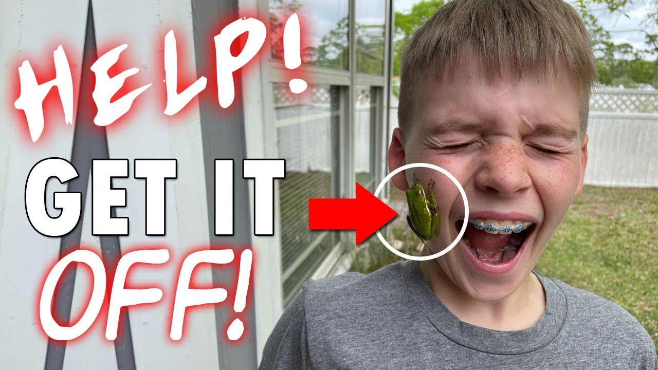 FROG ON HIS FACE!! || Mommy Monday