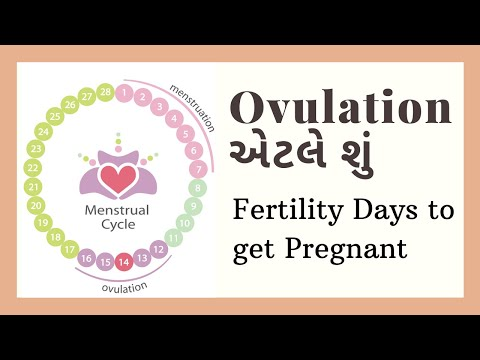 Ovulation એટલે શું? | ovulation | what is ovulation period in Gujarati | fertility period of a woman