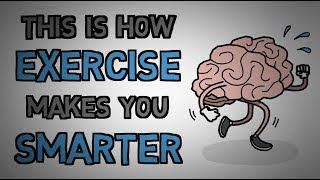 Exercise Makes You Smarter - This Is Why (animated)