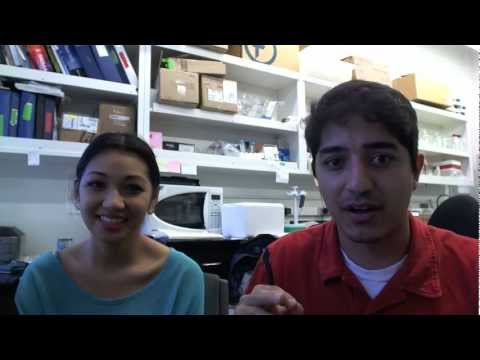How to Prepare and Study for the MCAT - Conversation between a Medical Student and an Undergraduate